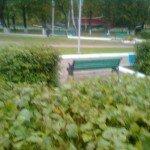 Лавка-сбывалка